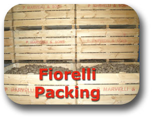 Fiorelli Packing
